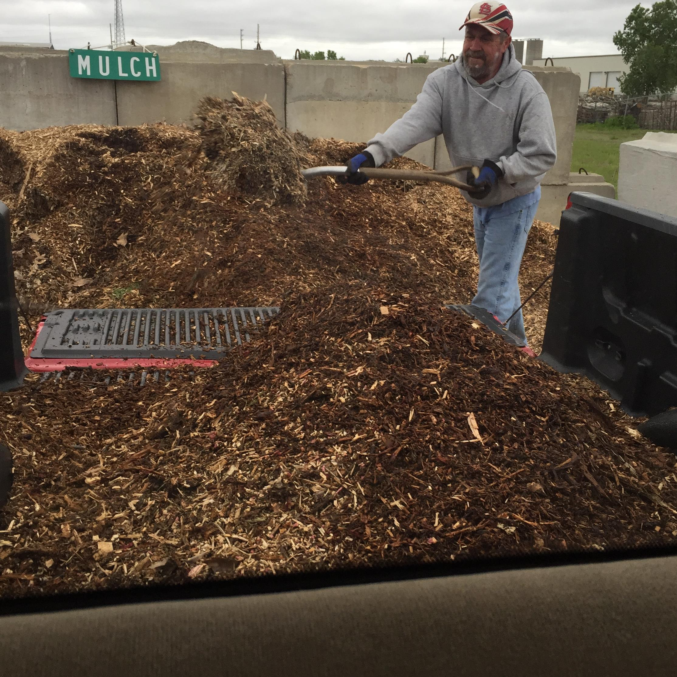 Picture of mulch.